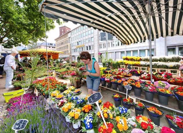 Blumenmarkt SCHAFFRATH|Blumenmarkt SCHAFFRATH|Blumenmarkt SCHAFFRATH|Blumenmarkt SCHAFFRATH|Blumenmarkt SCHAFFRATH||||||||||||