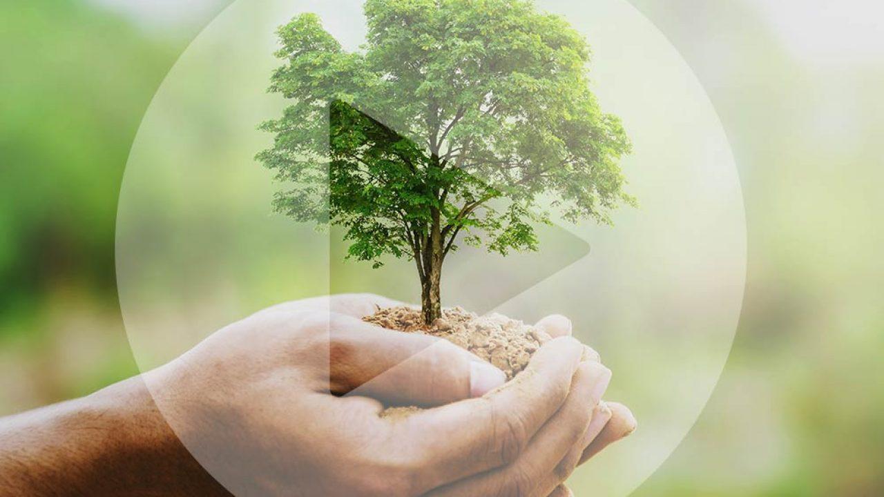 Umweltschutz in der CGW