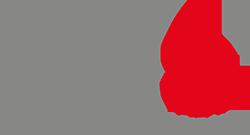 NDS Logo komplett